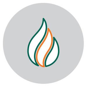 burner management